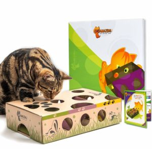 Interactive Treat maze cat Toys