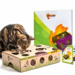 Puzzle feeder cats