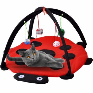 cat tent for self-entertainment