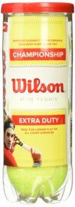 Tennis Ball Wilson Championship Extra Duty