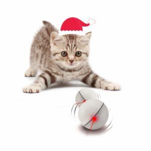 Yofun cat self-entertaining toys